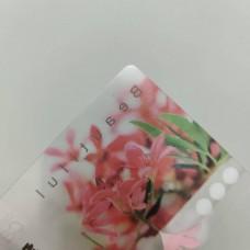 PVC全透明卡片